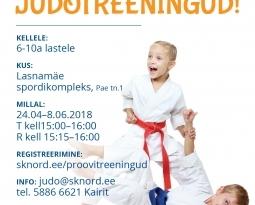 UUDIS – JUDOTREENINGUD LASNAMÄEL!